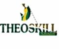 TheoskillInvestment